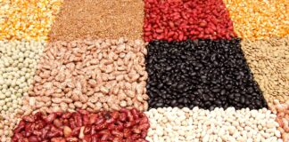 Il contributo dei legumi alla salute e alla sostenibilità