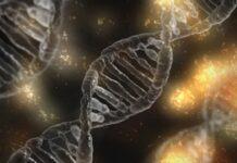 Esploriamo la bioproduction delle terapie avanzate